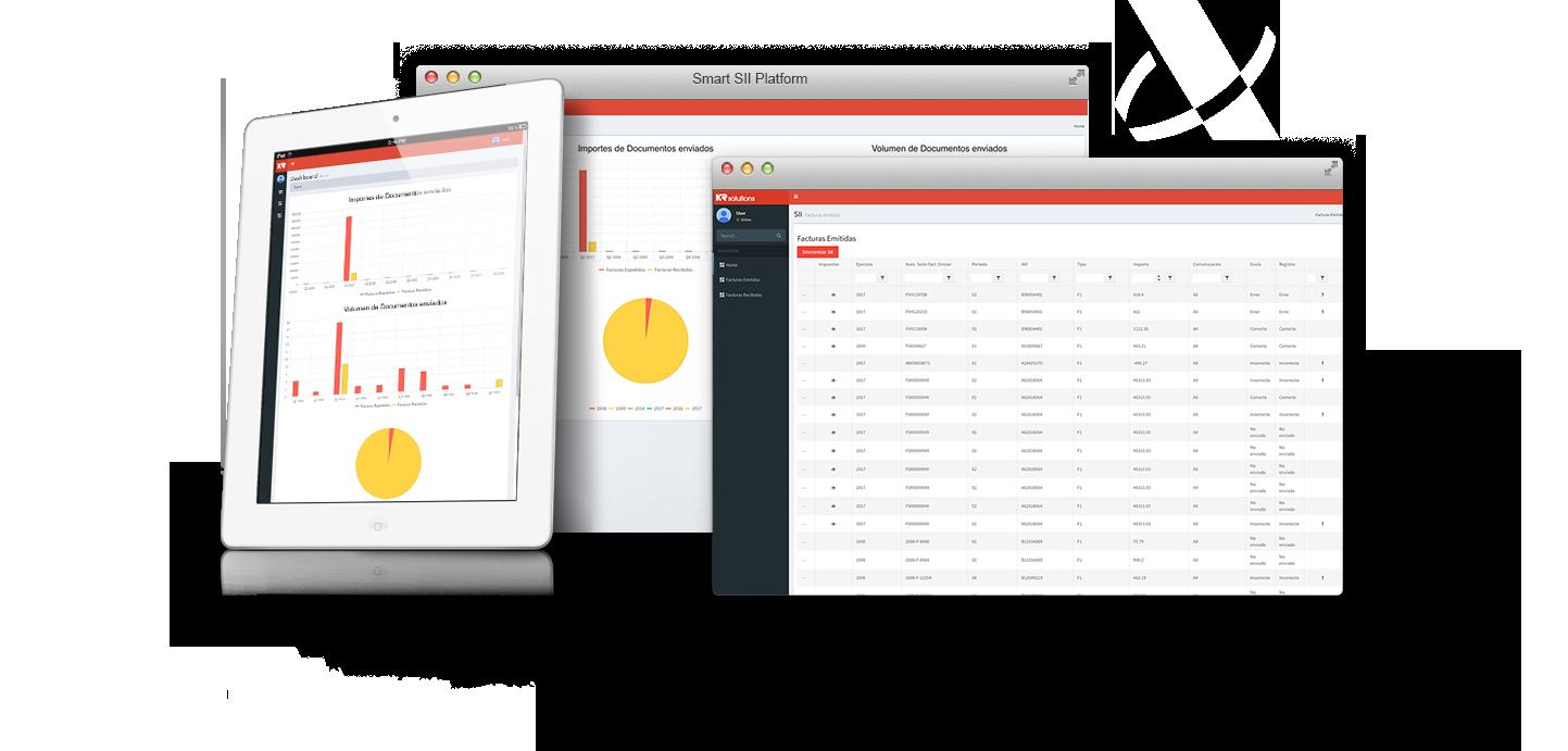 Consultoría de negocio aplicaciones a sistemas informáticos - Software ERP para el Suministro Inmediato de Información